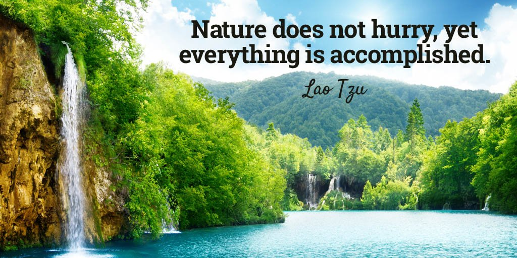 Accomplishing quote Nature does not hurry, yet everything is accomplished.