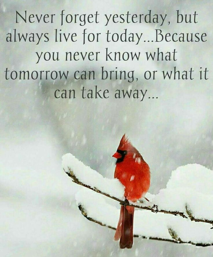 Past quote Never forget yesterday, but always live for today... Because you never know what