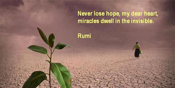 Dear quote Never lose hope, my dear heart, miracles dwell in the invisible.
