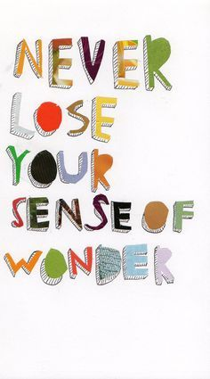 Wondering quote Never lose your sense of wonder.