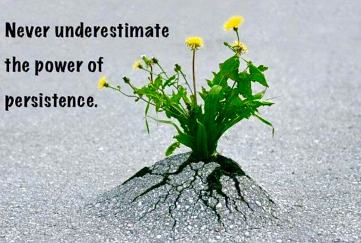 Persist quote Never underestimate the power of persistence.