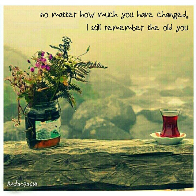 Remember quote No matter how much you have changed, I still remember the old you.