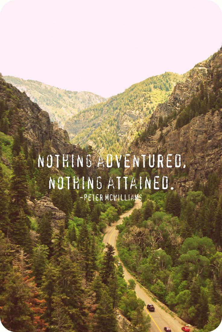 Nothing adventured, nothing attained. - Peter McWilliams