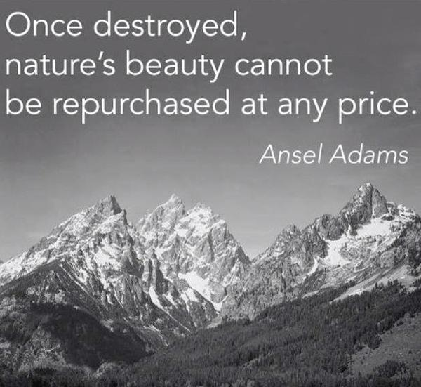 Ansel Adams Nature Quote