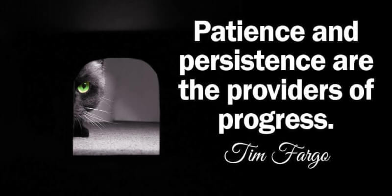 Patience and persistence quote Patience and persistence are the providers of progress.