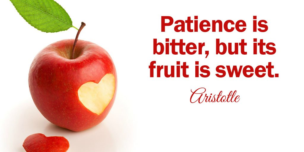 Patience is bitter, but its fruit is sweet. - Aristotle