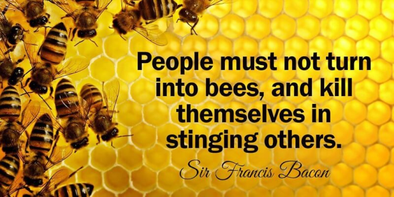 Honey bee quote People must not turn into bees, and kill themselves in stinging others.