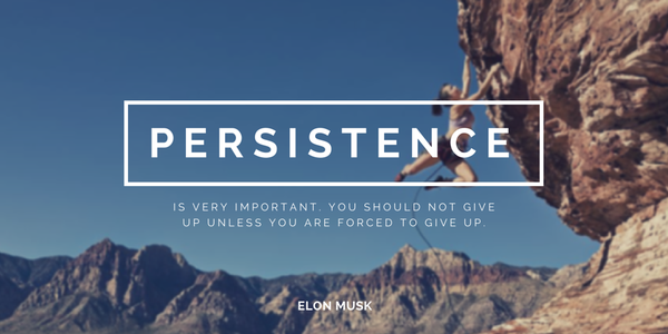 Elon Musk quote Persistence is very important. You should not give up unless you are forced to g