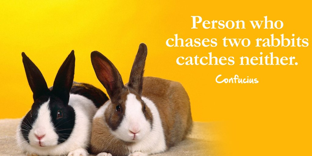 Person who chases two rabbits catches neither. - Confucius