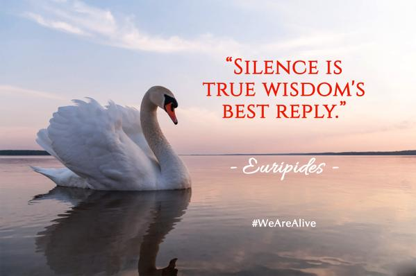 Euripides quote Silence is true wisdom's best reply.
