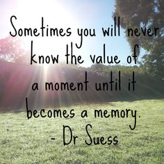 Sometimes you will never know the value of a moment until becomes a memory. - Dr. Seuss