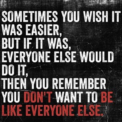 Sometimes you wish it was easier, but if it was, everyone else would do it, then you remember you don't want to be like everyone else. - Source Unknown
