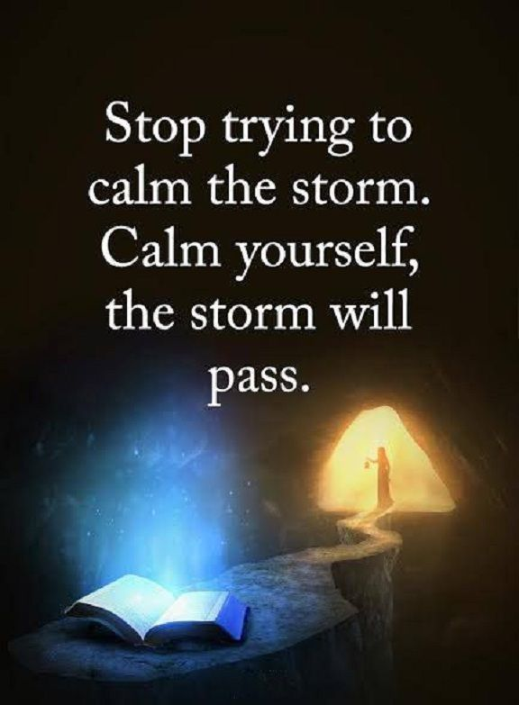 Stops quote Stop trying to calm the storm. Calm yourself, the storm will pass.