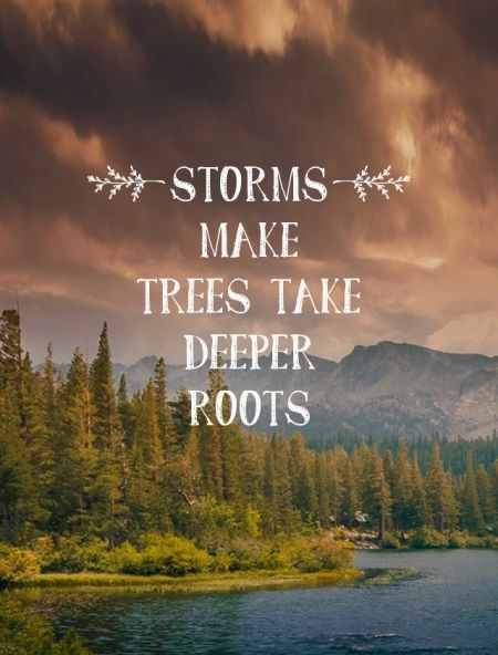 Deeply rooted quote Storms make trees take deeper roots.