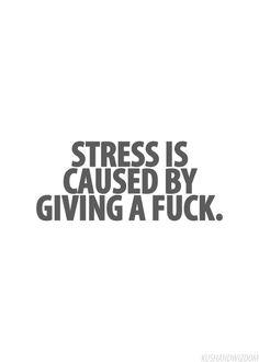 Causes quote Stress is caused by giving a fuck.