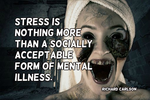 Formed quote Stress is nothing more than a socially acceptable form of mental illness.