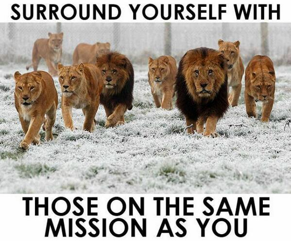 Surrounds quote Surround yourself with those on the same mission as you