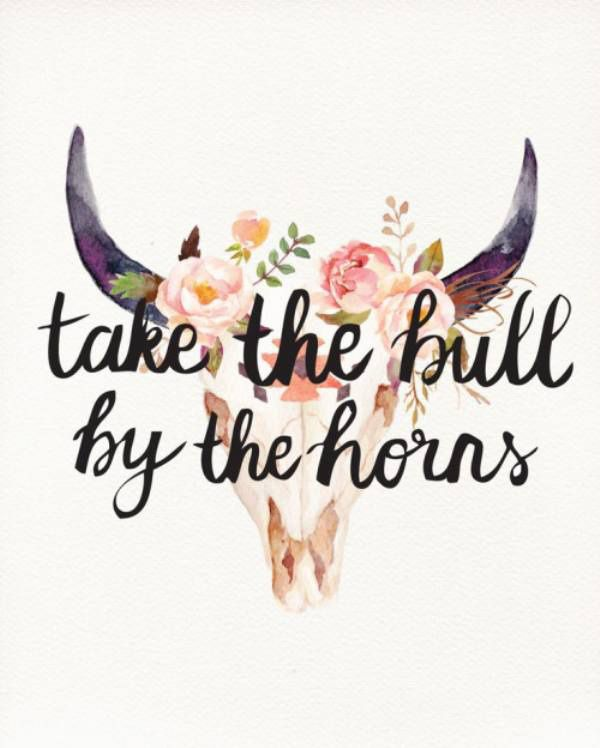 Confide quote Take the bull by the horns.