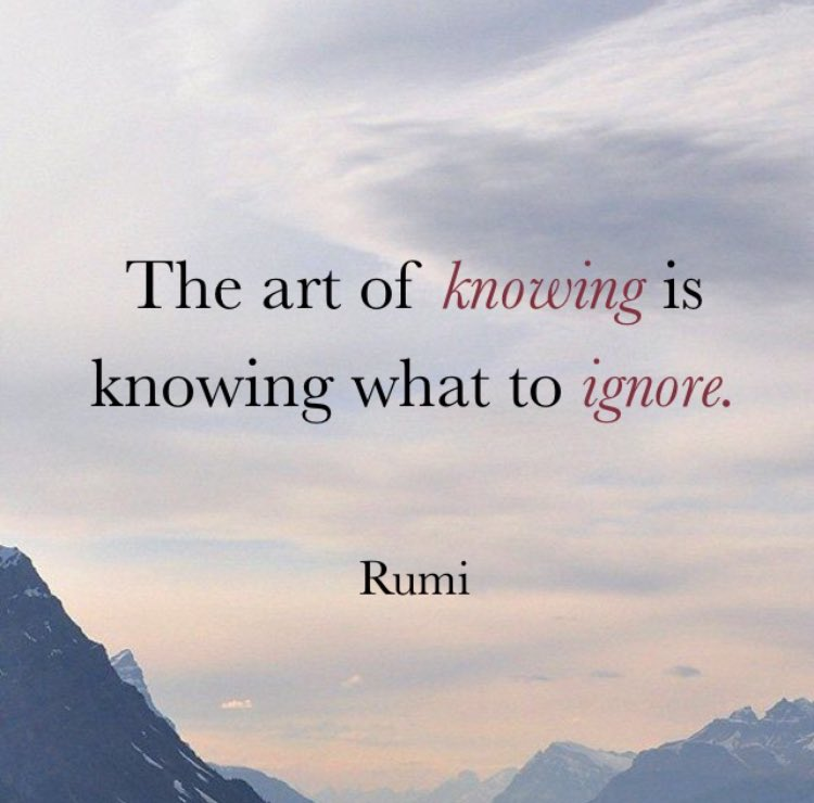 Knowledge quote The art of knowing is knowing what to ignore.