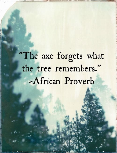Natural phenomena quote The axe forgets what the tree remembers.