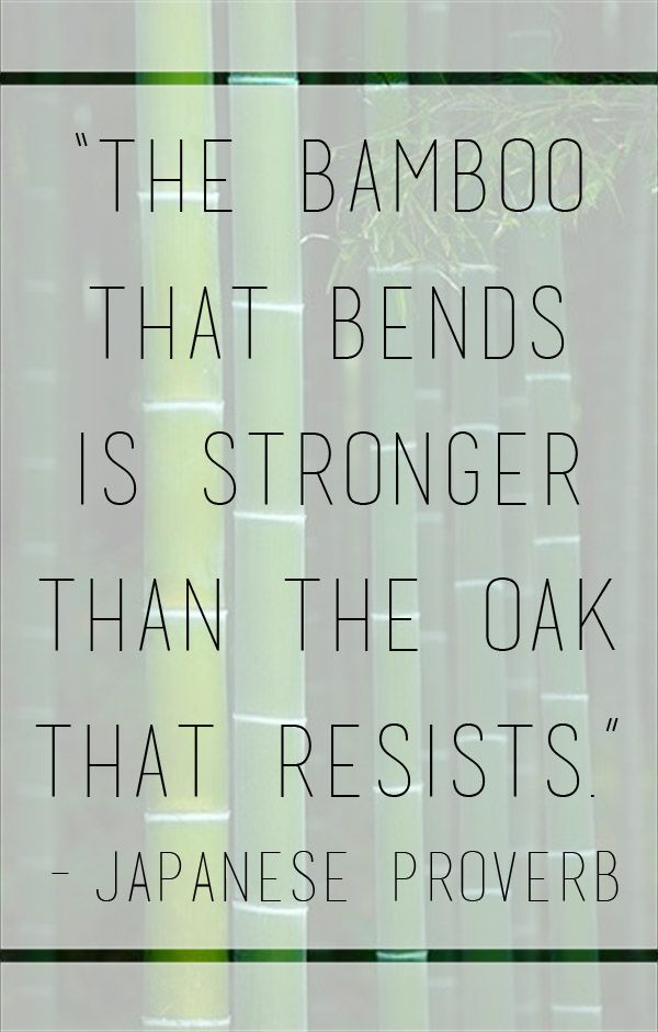 Oaks quote The bamboo that bends is stronger than the oak that resists.