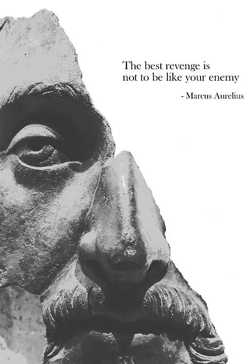 Liked quote The best revenge is not to be like your enemy.
