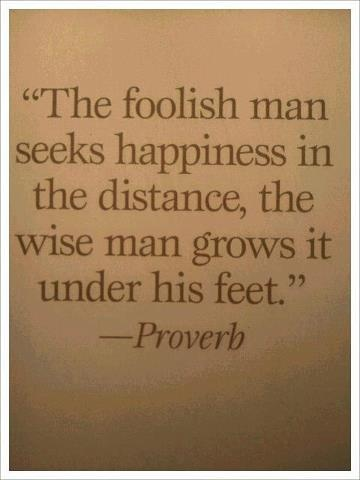 The foolish man seeks happiness in the distance, the wise man grows it under his feet. - Proverbs