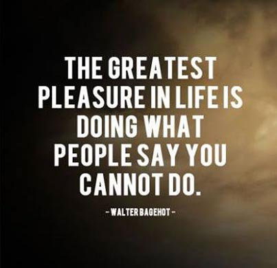 Pleased quote The greatest please in life is doing what people say you cannot do.