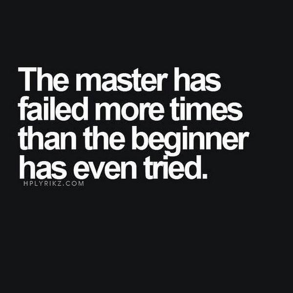 Attempts quote The master has failed more times than the beginner has even tried.