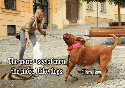 Clara Bow quote The more I see of men, the more I like dogs.