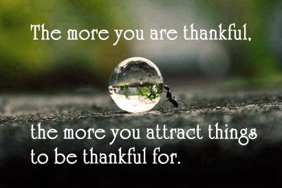 The more you are thankful, the more you attract things to be thankful for. - Sayings