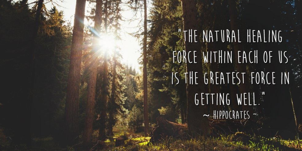 Healing quote The natural healing force within each one of us is the greatest force in getting