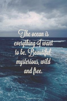 Standards of beauty quote The ocean is everything I want to be. Beautiful, mysterious, wild and free.