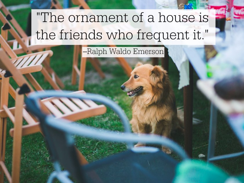 The ornament of a house is the friend who frequent it. - Ralph Waldo Emerson