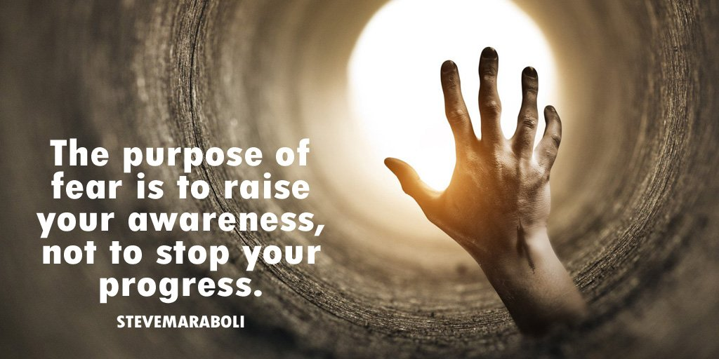 Steve Maraboli quote The purpose of fear is to raise your awareness, not to stop your progress.