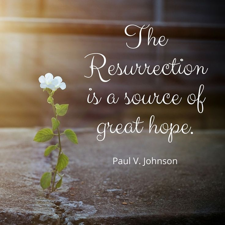 Picture quote by Paul Johnson about hope