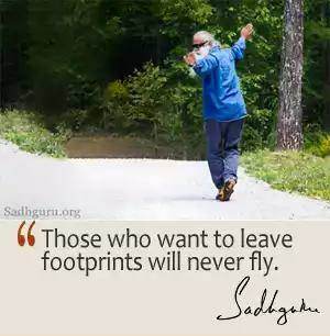Those who want to leave footprints will never fly. -