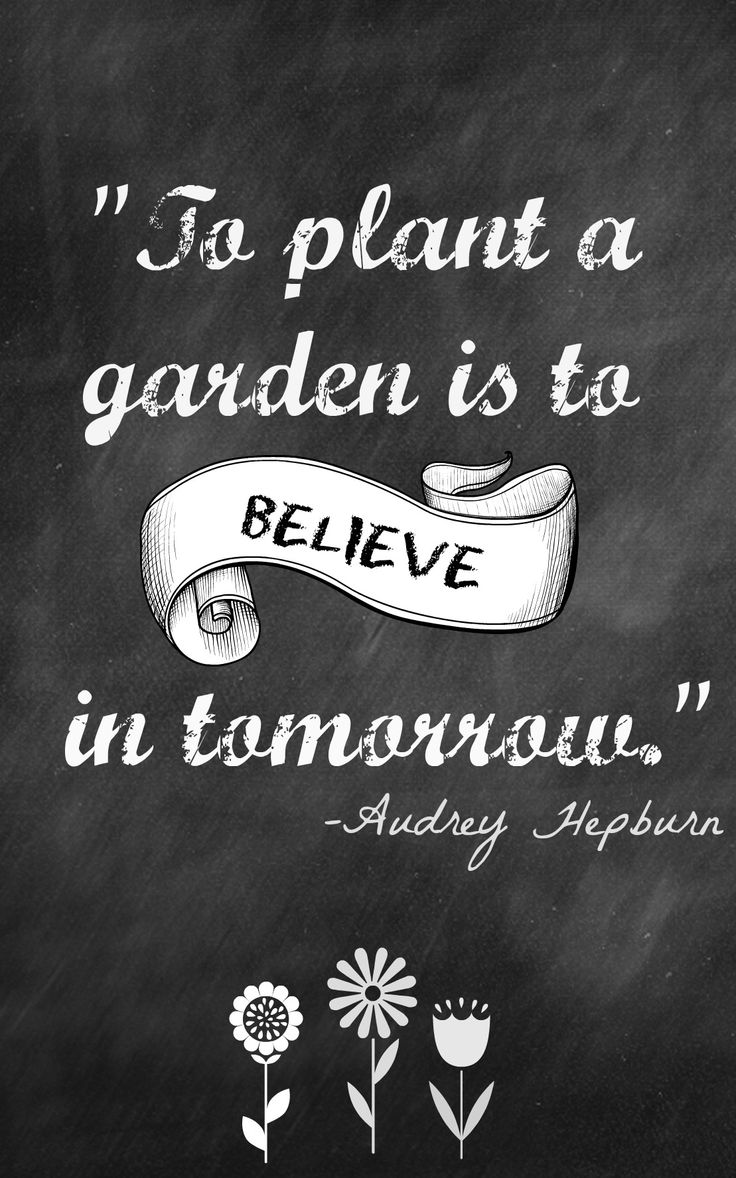 Gardens quote To plant a garden is to believe in tomorrow.