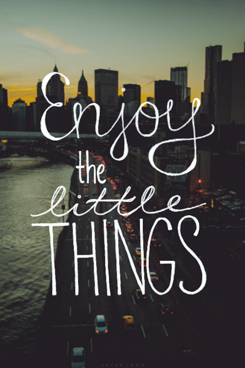 Little things quote Enjoy the little things
