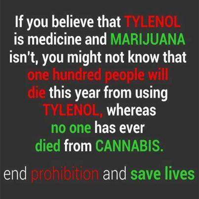 If you believe that TYLENOL is medicine and MARIJUANA isn't, you might not know that one hundred people will die this year from using TYLENOL, whereas no one has ever died from CANNABIS. End prohibition and save lives. - Unknown