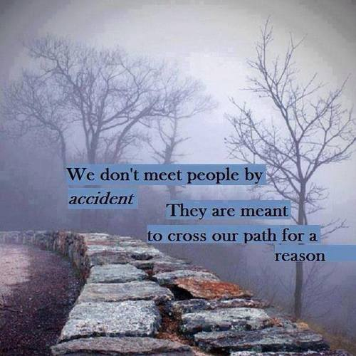 We don't meet people by accident. They are meant to cross our path for a reason. - Unknown