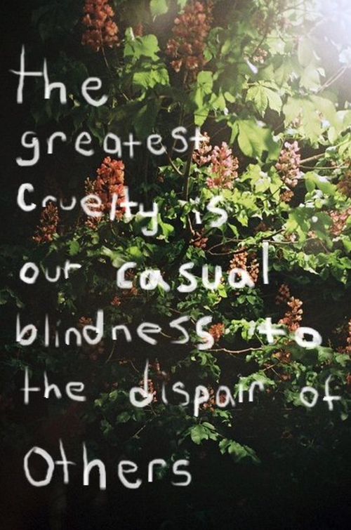 Blindness quote The greatest cruelty is our casual blindness to the despair of others.