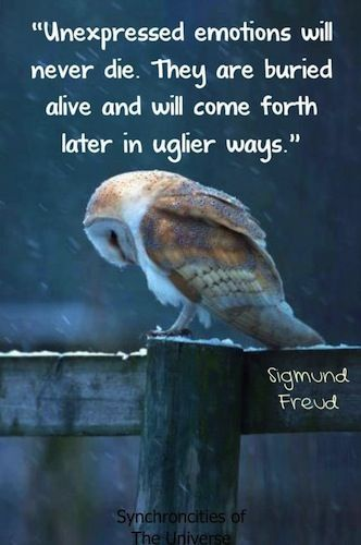 Unexpressed emotions will never die. They are buried alive and will come forth later in uglier ways. - Sigmund Freud