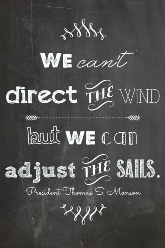 My destiny quote We cant direct the wind, but we can adjust the sails.