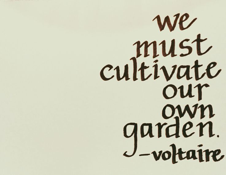 We must cultivate our own garden. - Voltaire