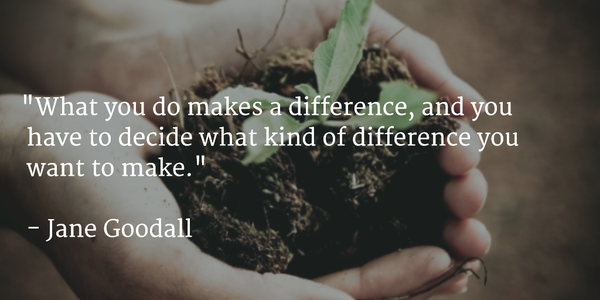Decision making quote What you do makes a difference, and you have to decide what kind of difference y