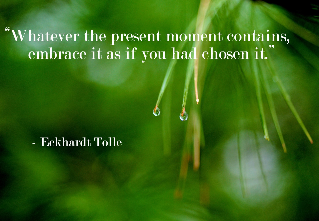 Eckhart Tolle quote Whatever the present moment contains, embrace it as if you has chosen it.
