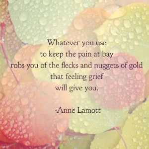 Whatever you use to keep the pain at bay robs you of the fleck and nuggets of gold that feeling grief will give you. - Anne Lamott