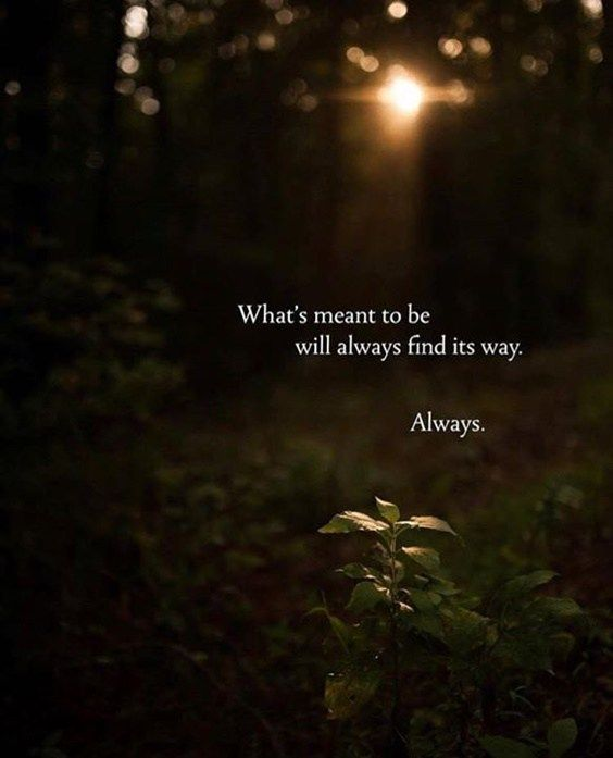Finding yourself quote What's meant to be will always find its way. Always.