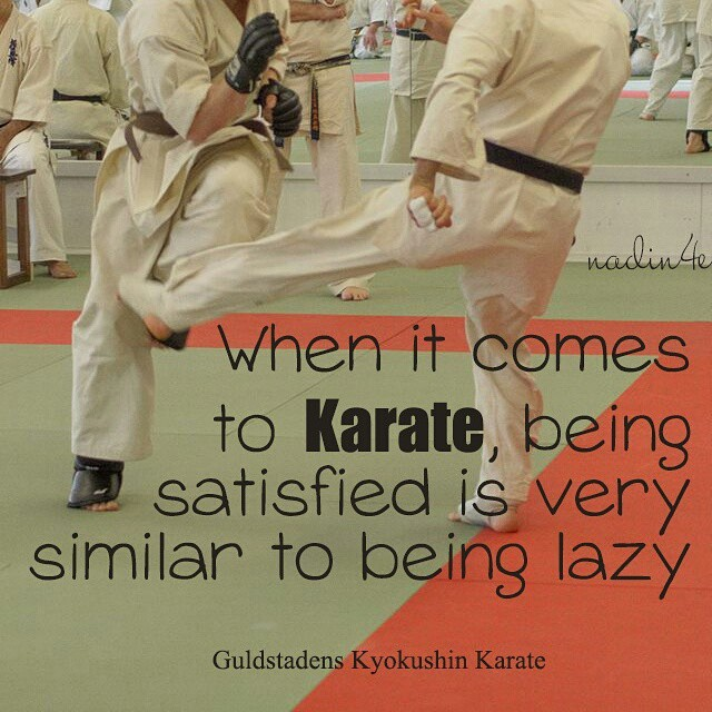 Laziness quote When it comes to Karate, being satisfied is very similar to being lazy.